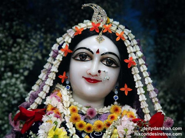 Srimati Radharani Close up Wallpaper (080)