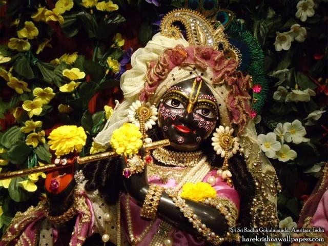 Sri Gokulananda Close up Wallpaper (001)
