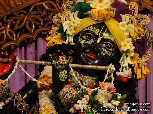 Sri Madhava Close up Wallpaper (001)