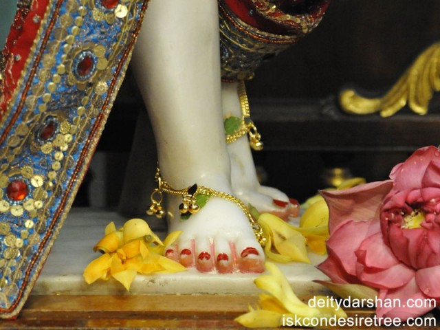 Sri Nitai Feet Wallpaper (001)