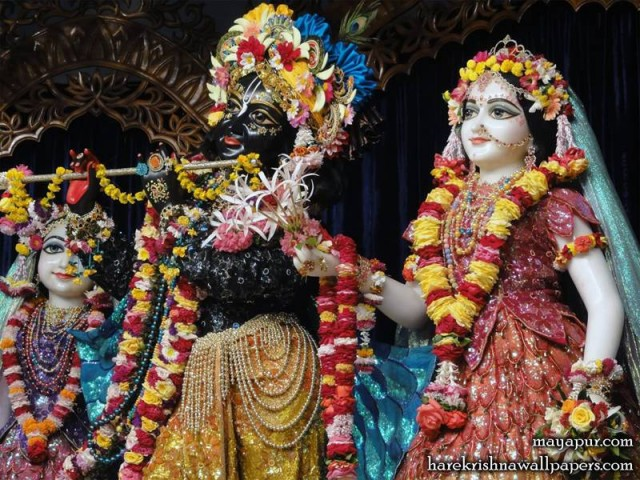 Sri Sri Radha Madhava Close up Wallpaper (002)
