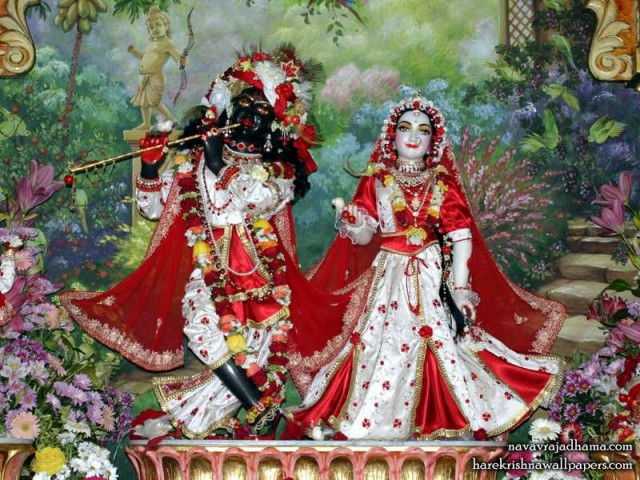 Sri Sri Radha Shyamsundar Wallpaper (002)