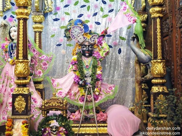 Sri Gopal Wallpaper (003)