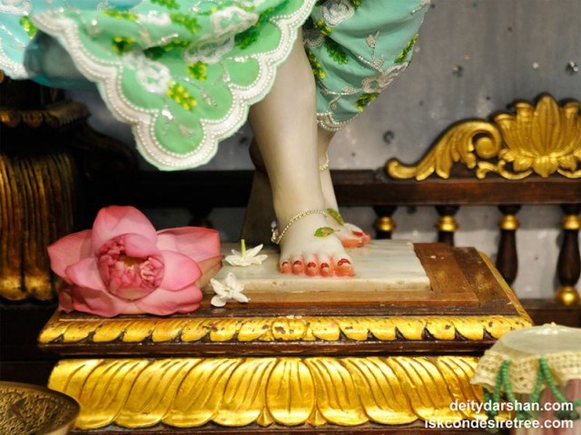Sri Nitai Feet Wallpaper (003)