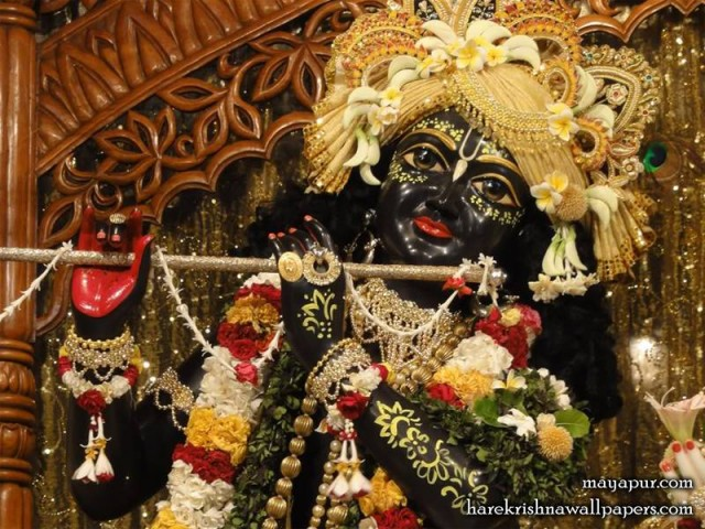 Sri Madhava Close up Wallpaper (004)