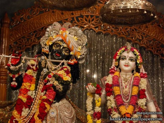 Sri Sri Radha Madhava Close up Wallpaper (005)