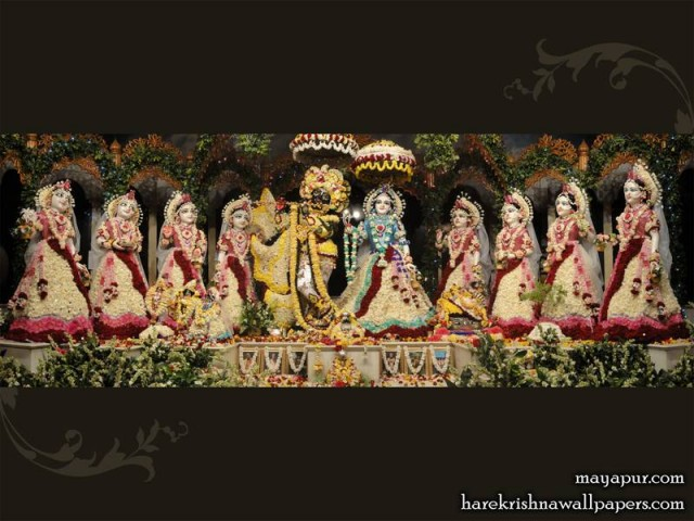 Sri Sri Radha Madhava with Ashta Sakhi Wallpaper (005)