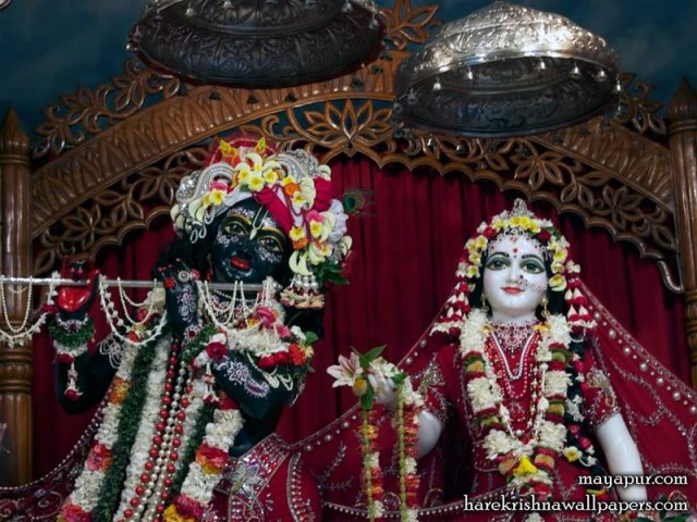Sri Sri Radha Madhava Close up Wallpaper (006)