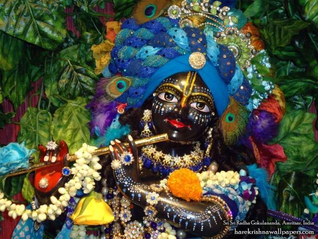 Sri Gokulananda Close up Wallpaper (007)