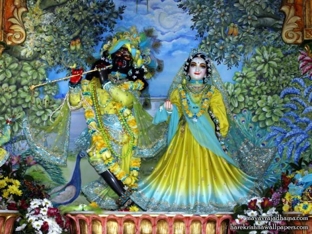 Sri Sri Radha Shyamsundar Wallpaper (009)