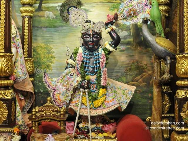 Sri Gopal Wallpaper (011)