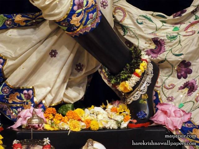 Sri Madhava Feet Wallpaper (015)