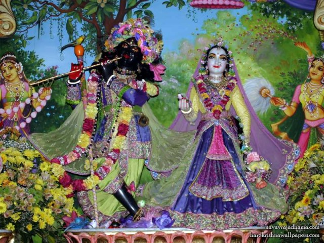 Sri Sri Radha Shyamsundar Wallpaper (018)