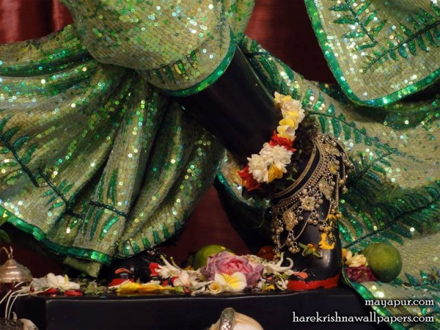 Sri Madhava Feet Wallpaper (020)