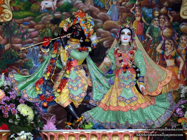 Sri Sri Radha Shyamsundar Wallpaper (023)