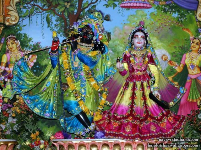 Sri Sri Radha Shyamsundar Wallpaper (024)