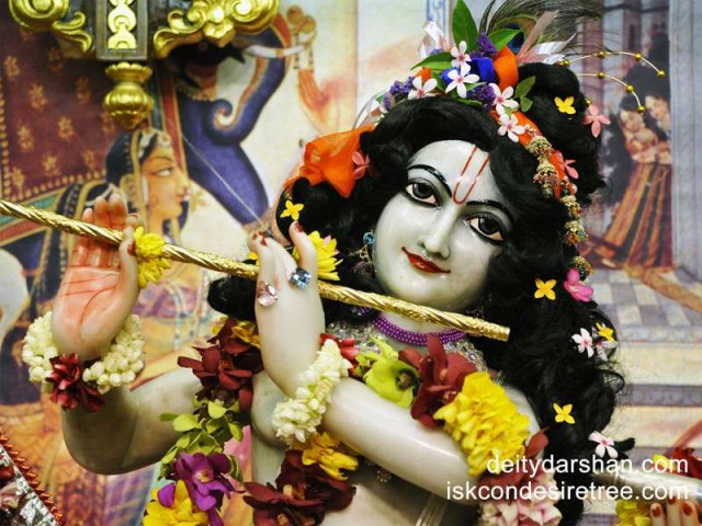 Sri Gopinath Close up Wallpaper (046)