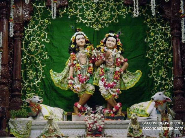Sri Sri Krishna Balaram Wallpaper (061)