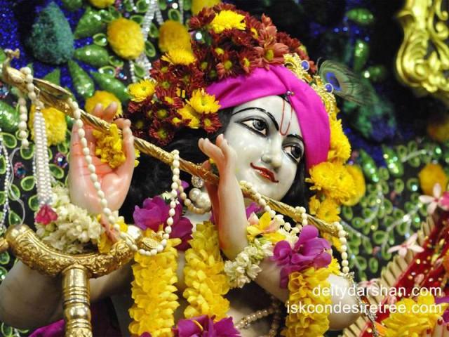 Sri Gopinath Close up Wallpaper (069)