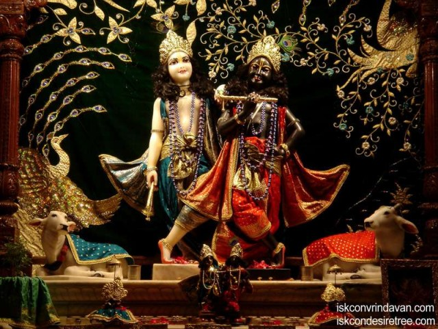 Sri Sri Krishna Balaram Wallpaper (074)