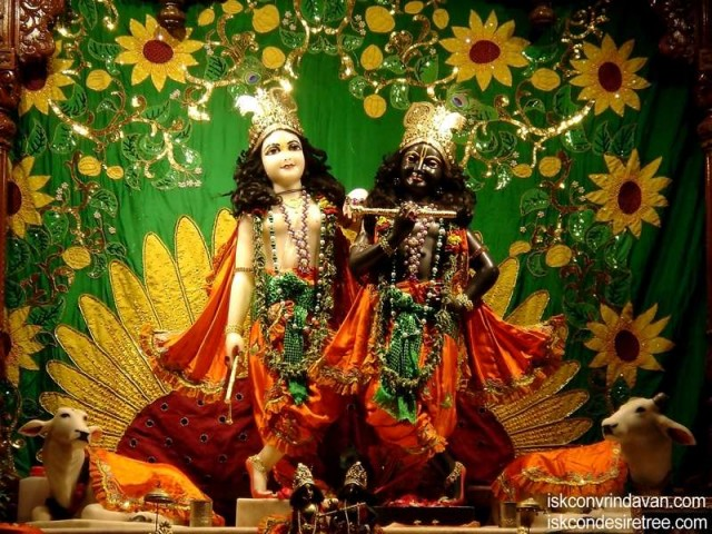 Sri Sri Krishna Balalram Wallpaper (086)