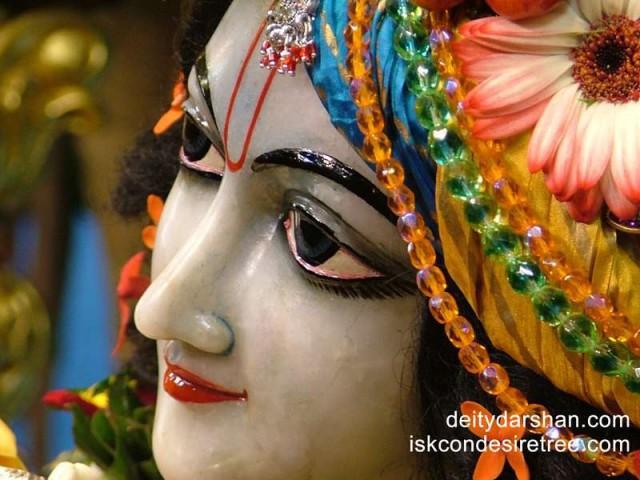Sri Gopinath Close up Wallpaper (090)