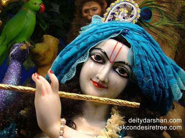 Sri Gopinath Close up Wallpaper (091)