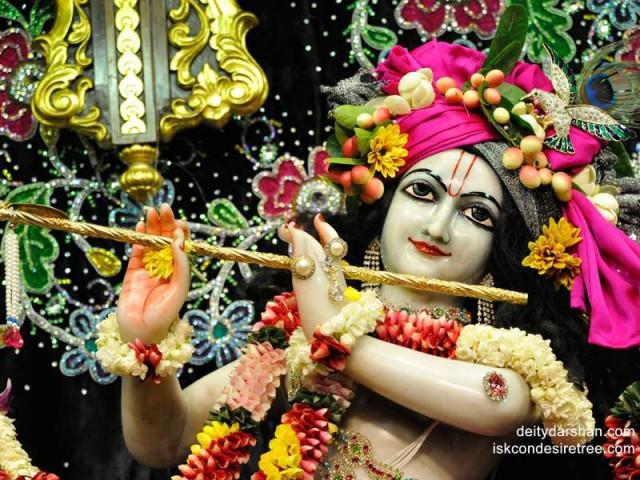 Sri Gopinath Close up Wallpaper (124)