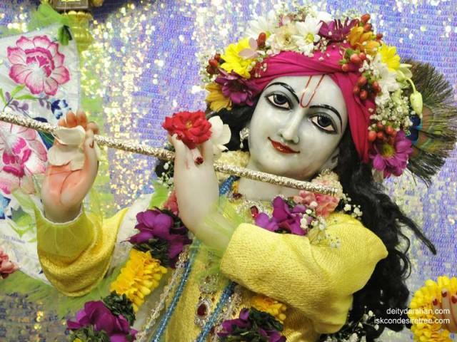 Sri Gopinath Close up Wallpaper (131)