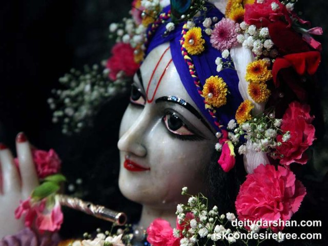 Sri Gopinath Close up Wallpaper (138)