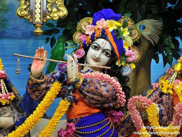 Sri Gopinath Close up Wallpaper (144)