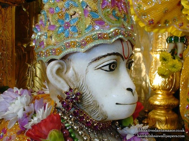 Sri Hanuman Close up Wallpaper (002)