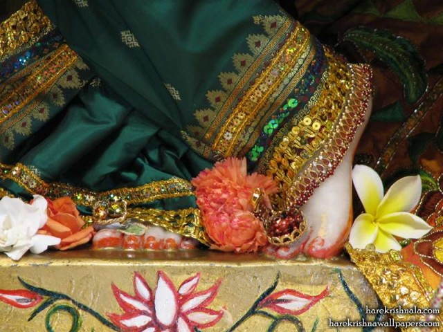 Sri Dwarkadhish Feet Wallpaper (003)