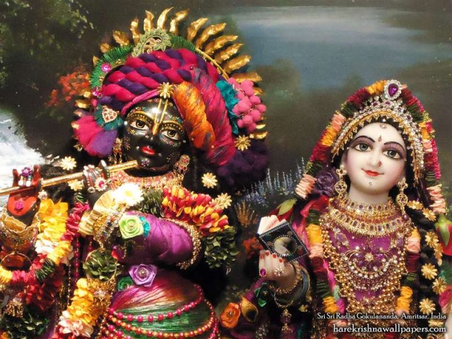 Sri Sri Radha Gokulananda Close up Wallpaper (003)