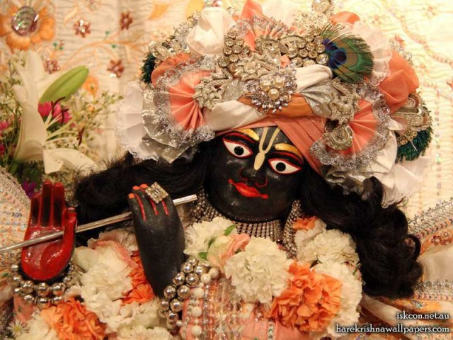 Sri Vallabh Close up Wallpaper (003)