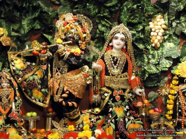 Sri Sri Radha Gokulananda Wallpaper (006)