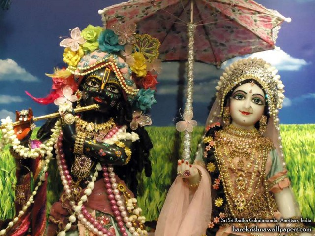 Sri Sri Radha Gokulananda Close up Wallpaper (006)