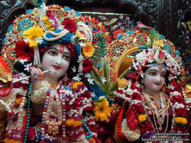Sri Sri Radha Giridhari Close up Wallpaper (007)