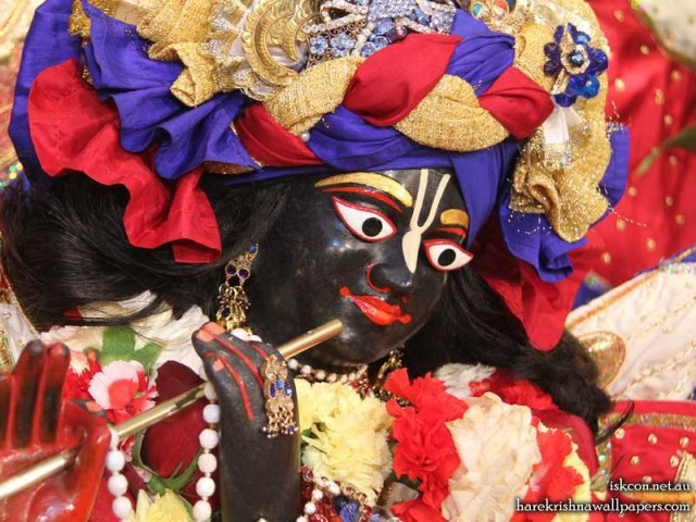 Sri Vallabh Close up Wallpaper (007)