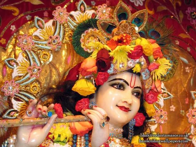 Sri Gokulananda Close up Wallpaper (010)