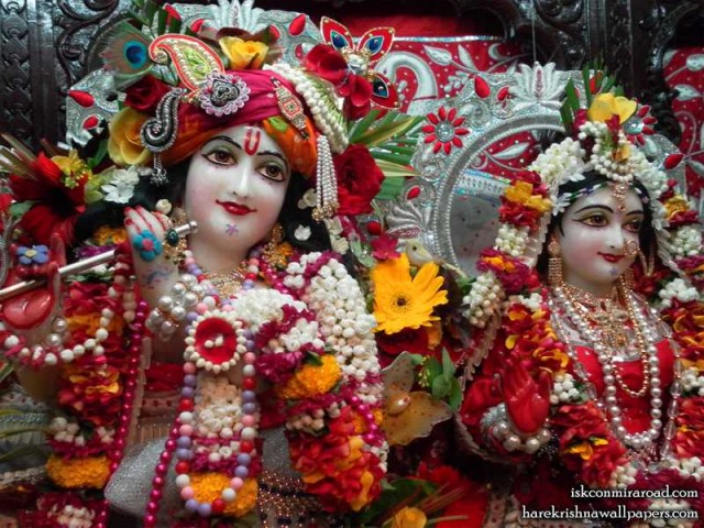 Sri Sri Radha Giridhari Close up Wallpaper (011)