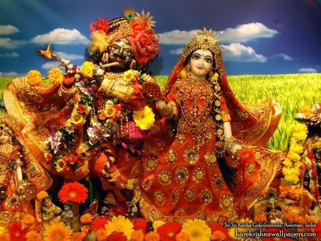 Sri Sri Radha Gokulananda Wallpaper (011)