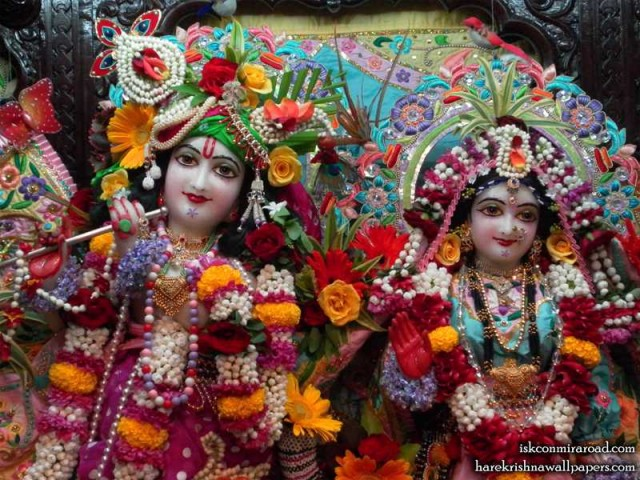 Sri Sri Radha Giridhari Close up Wallpaper (012)