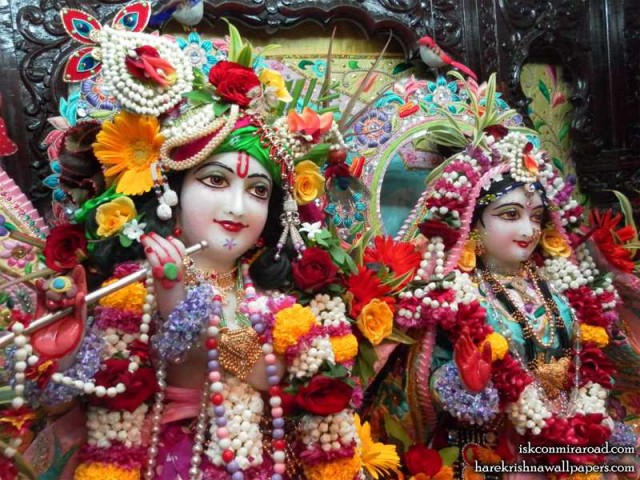 Sri Sri Radha Giridhari Close up Wallpaper (013)