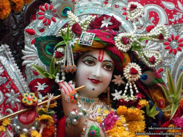 Sri Giridhari Close up Wallpaper (014)