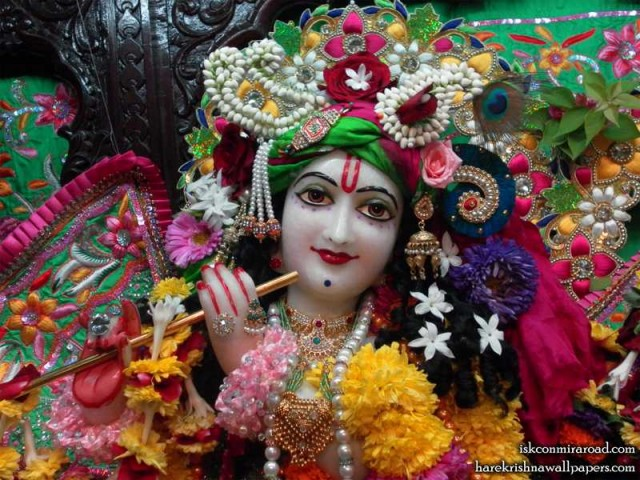 Sri Giridhari Close up Wallpaper (015)