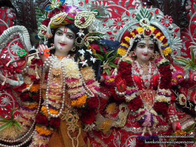 Sri Sri Radha Giridhari Close up Wallpaper (019)