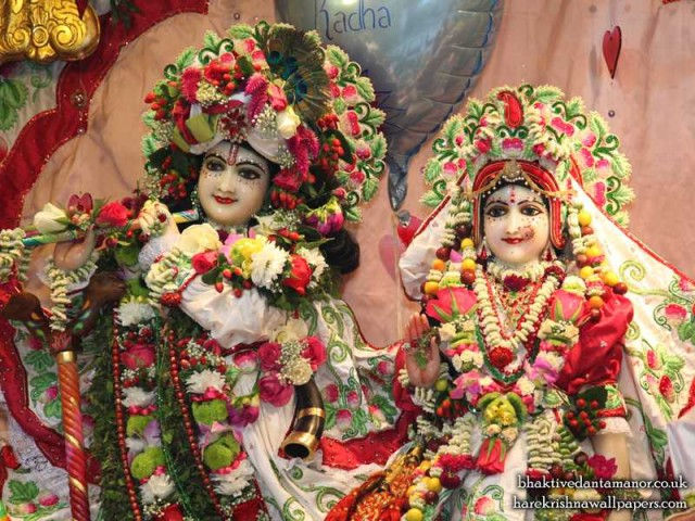 Sri Sri Radha Gokulanand Close up Wallpaper (021)