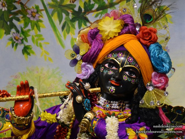 Sri Madan Gopal Close up Wallpaper (001)