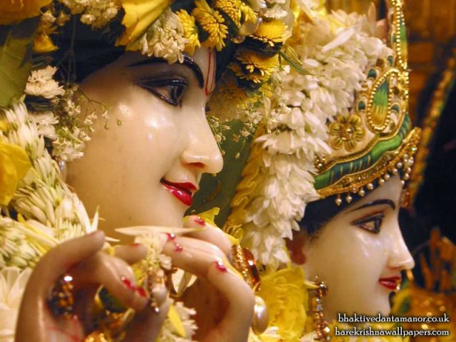 Sri Sri Radha Gokulanand Close up Wallpaper (012)